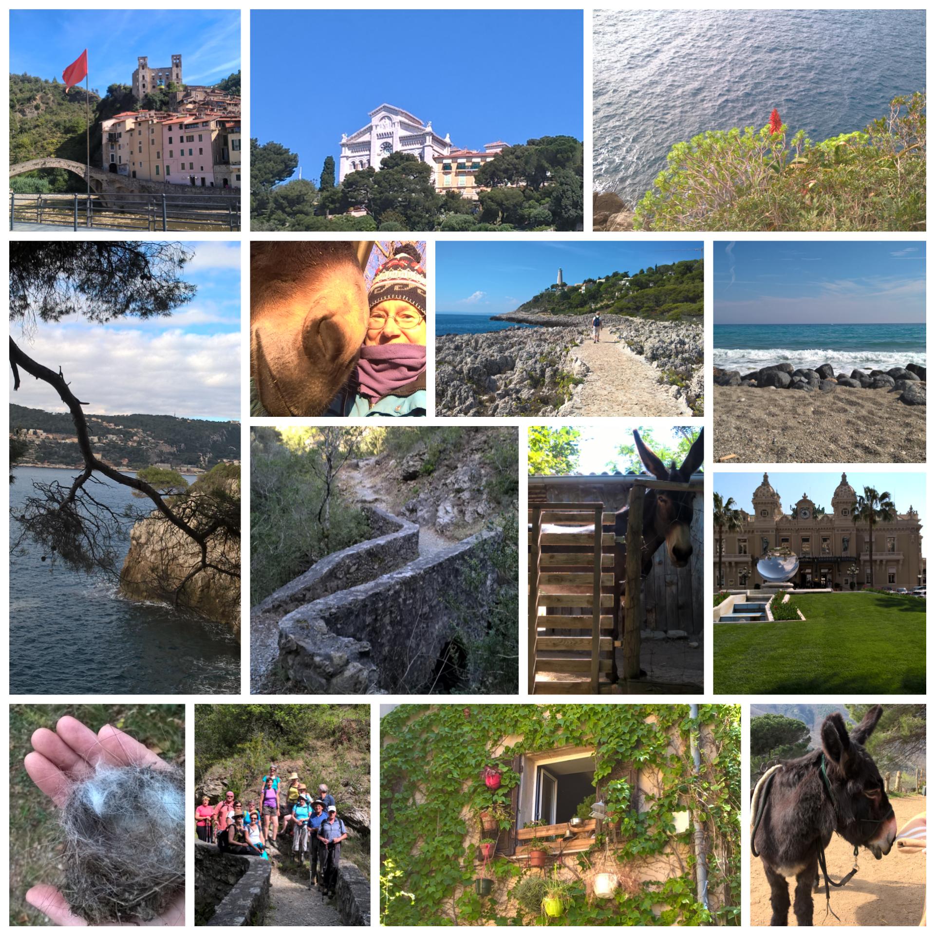 14 foto con asini, mare, gruppo di escursionisti, Casinò di Montecarlo